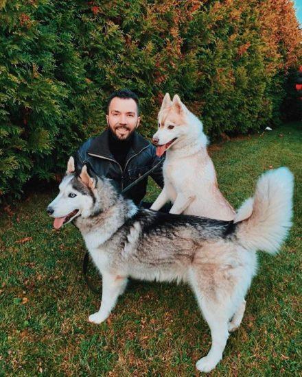 Денис Клявер с собаками